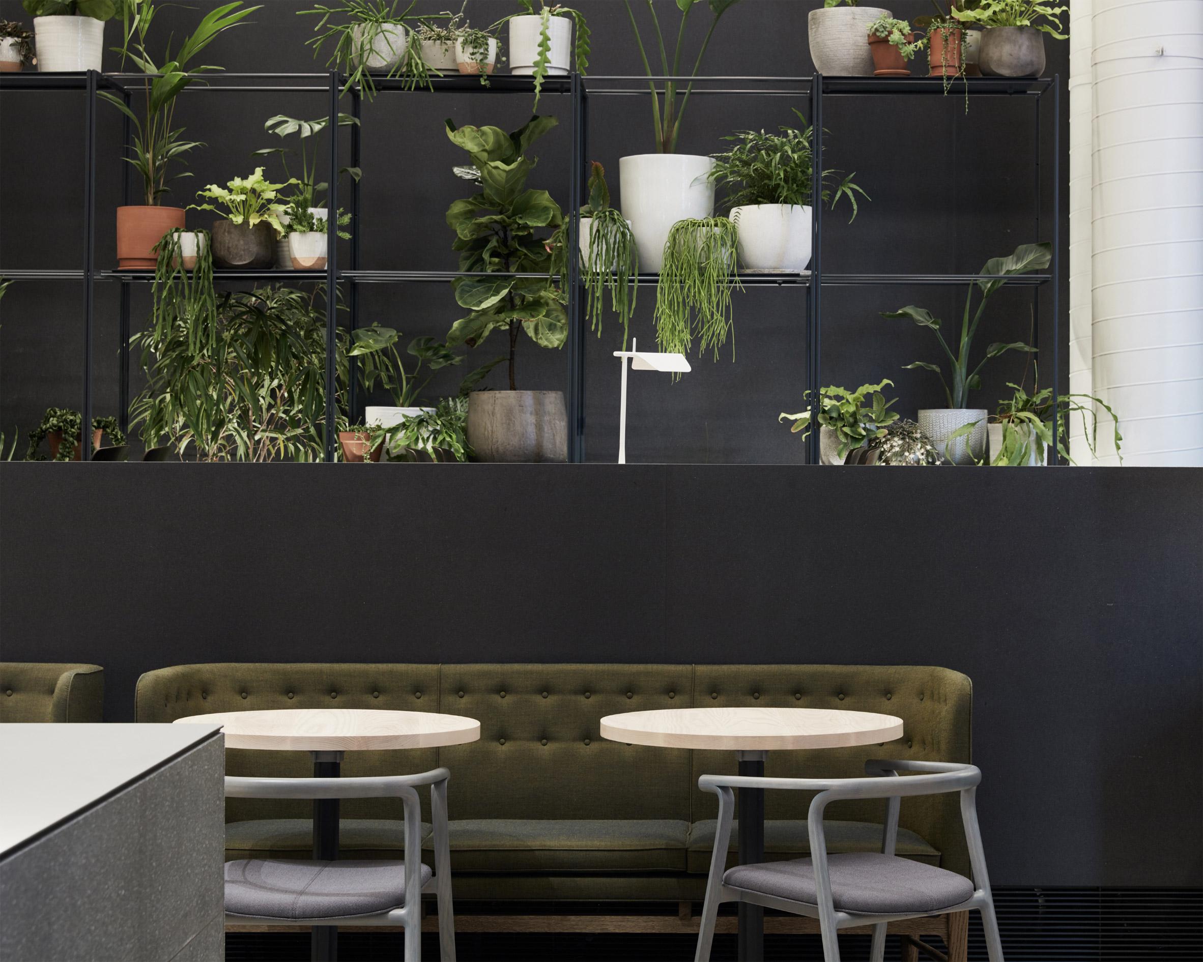 higher-ground-design-office-interior-melbourne-australia_dezeen_2364_col_5-1
