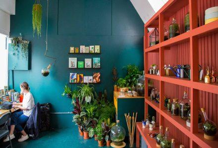 伦敦一家被照片激发的花店
