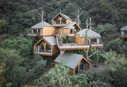 """杭州·""""开元森泊""""树屋度假酒店设计"""